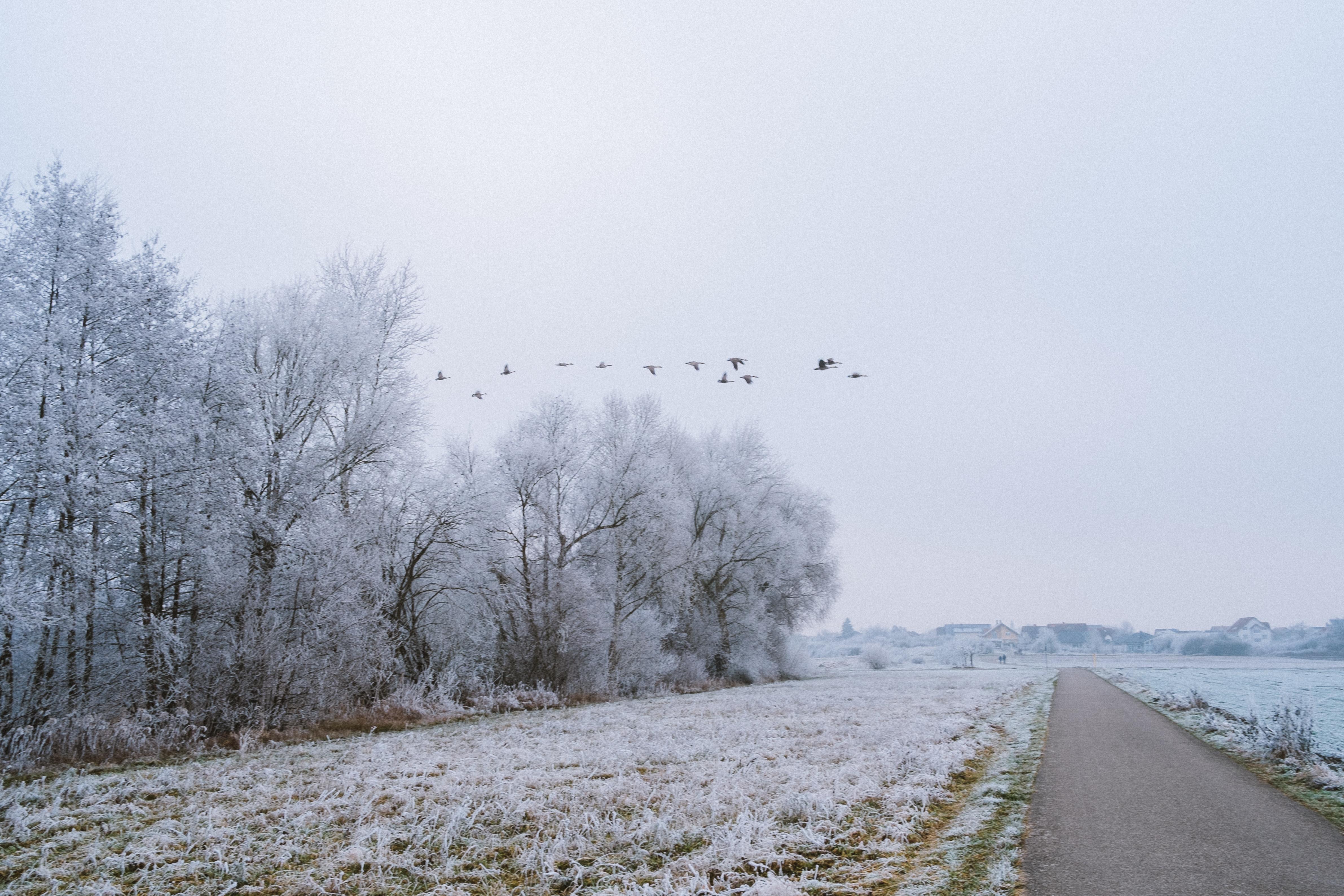 Mannheim Winter Wochenende